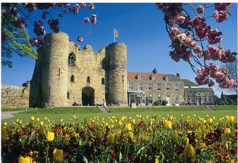 Tonbridge Castle Tulips © Tonbridge BC