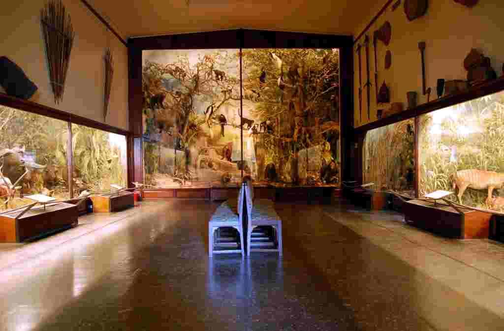Quex park powell cotton museum kent film office for Quax parc