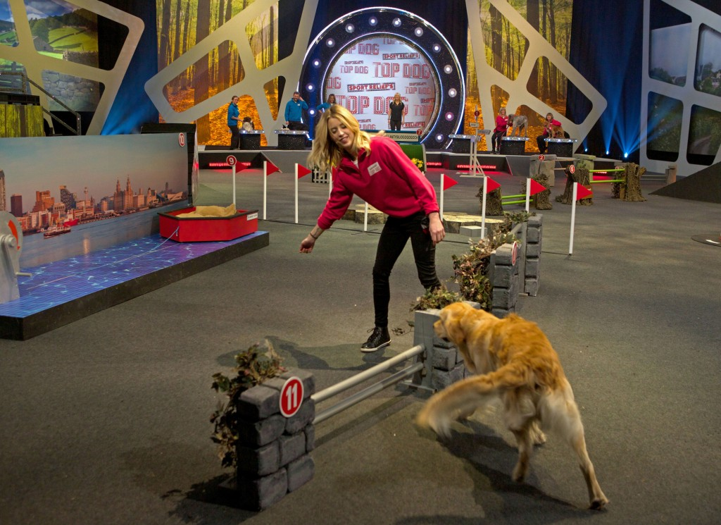 Peaches Geldof-Cohen is standing at the opposite side of a jump to her dog, crouching down slightly and signalling at him with her hand to jump over as he is running toward them. The jump is part of an obstacle course where agility poles can be seen in the background infront of a large sport relief top dog logo.