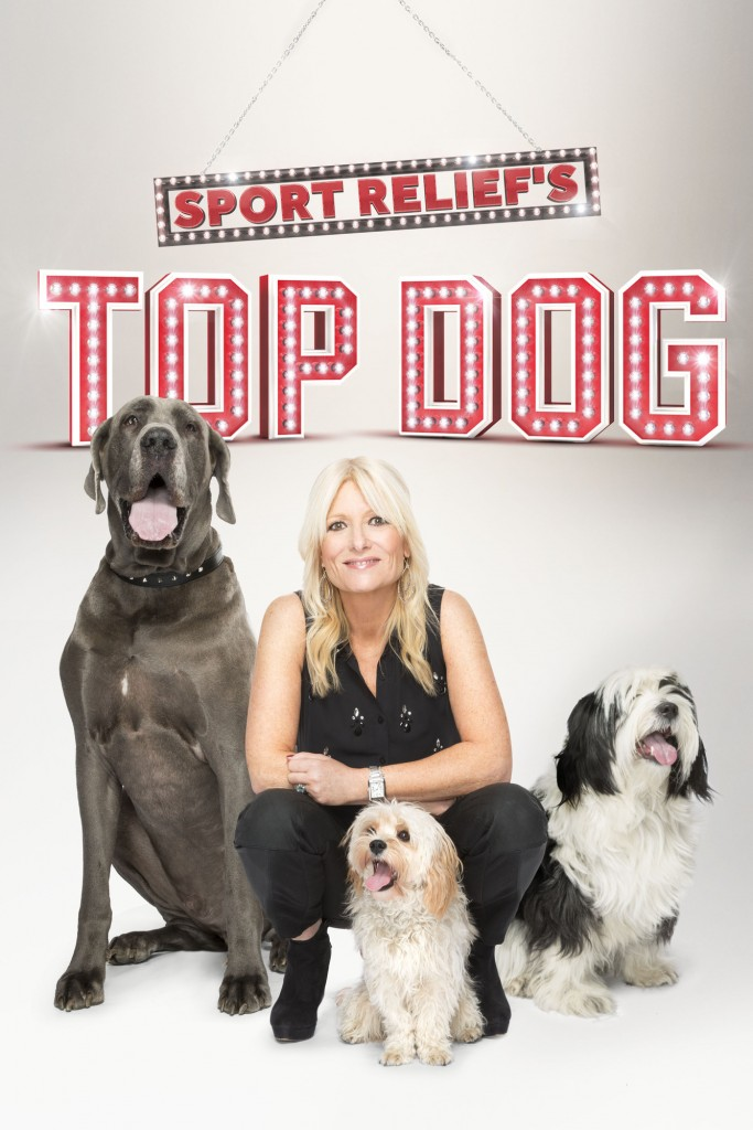 Gaby Roseline is crouching down with a great dane sitting beside her on her right side and two smaller dogs sitting by her left side. The words Sports reliefs top dog are above them in red writing on a grey background.