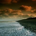 The Garden screenshot - Dungeness beach and sea