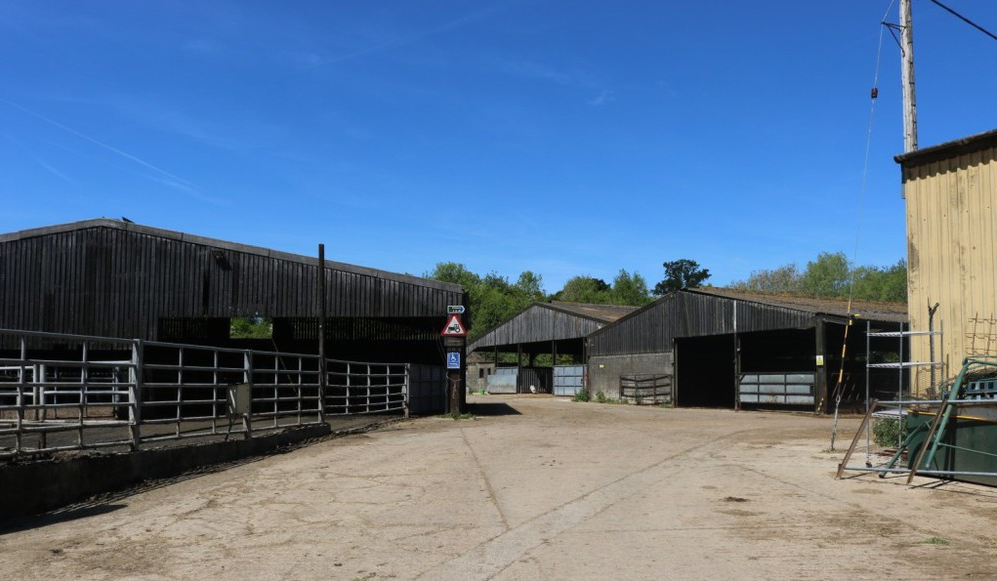 Image of Place Farm with blue sky and various farm buildings in the background.