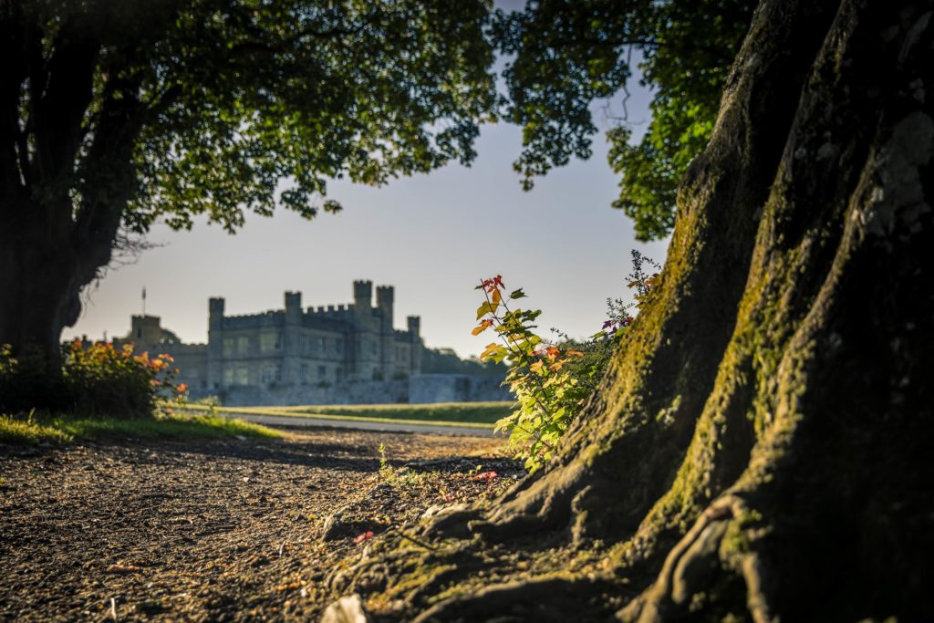 Exterior shot of Leeds Castle in the distance, taken from the ground behind some trees.